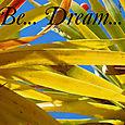 Dragon_tree_banner