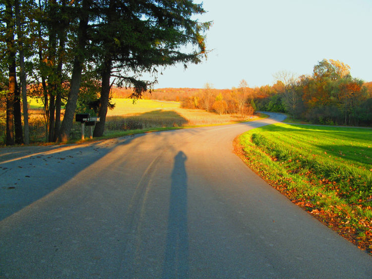 Road 2_edited-1