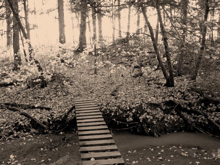 Bridge_edited-2