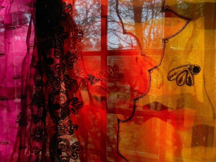 Sari lace 4
