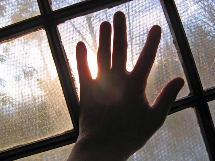 Window 750
