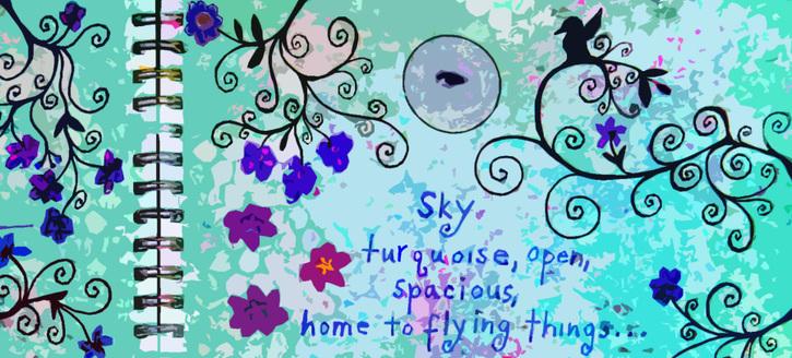 Sky_journal