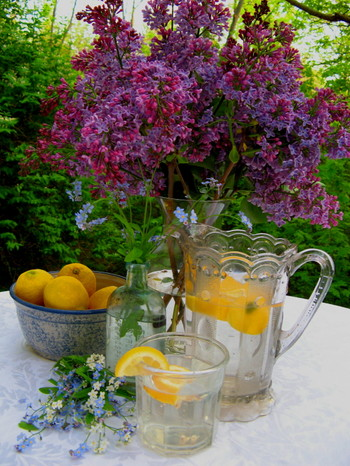 Lilacs_forgetmenots_lemonade