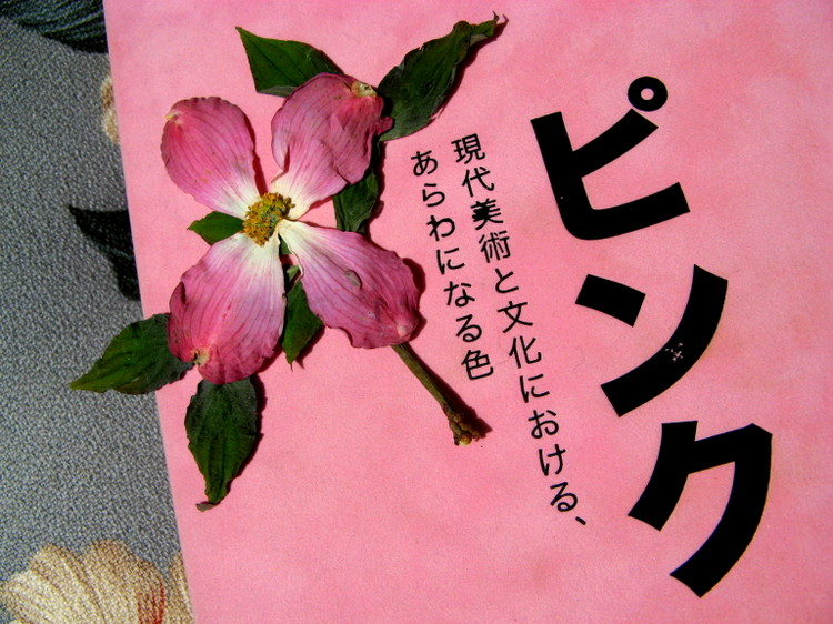 Pink_the_book